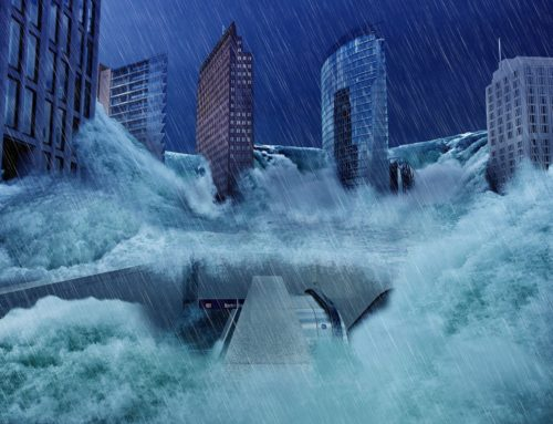 Die letzte Klimawahl – the last climate election